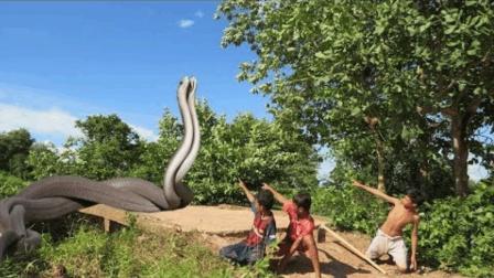 柬埔寨小孩骑车回家, 意外抓获5米长的巨蟒, 简直赚翻了
