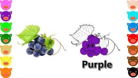 幼儿色彩启蒙 葡萄简笔画 带小朋友们认识水果的正确颜色和发音