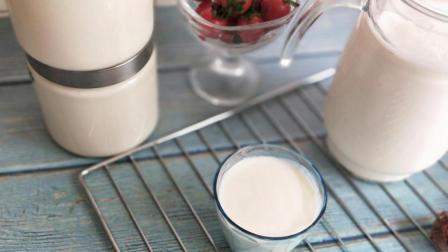 只需一小瓶红枣酸奶就可以自制出一大桶好喝的酸奶, 方法快速简单