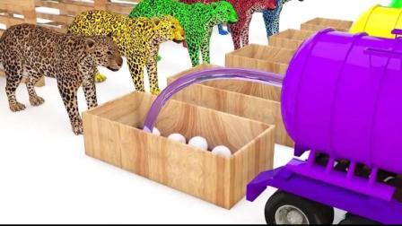 幼儿色彩和英语启蒙早教, 玩具锤敲击彩色小球