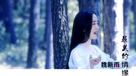 魏新雨《最美的情缘》MV