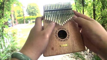 聆听拇指琴演奏《起风了》