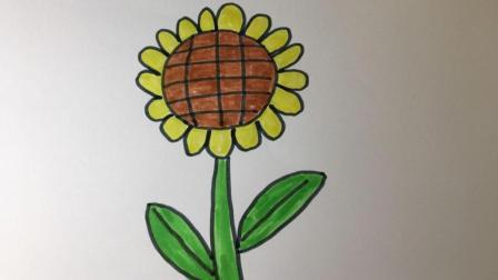 【简笔画23】有趣的植物向日葵