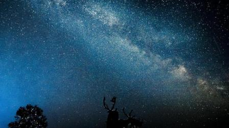 夜空中最亮的星, 这片星空美的不像人间!