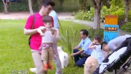 甜馨看见小猪就秒怂, 赶紧喊爸爸赶紧来救驾! 这段看一次笑一次!