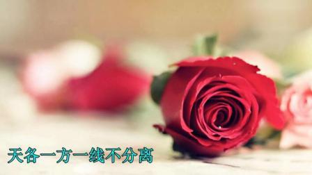 今天老婆节, 老公的一首情歌送给老婆, 老婆你辛苦了, 永远爱你
