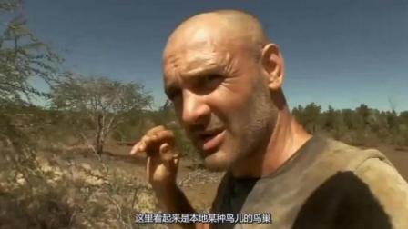 荒野求生: 德哥饿了3天, 找到了快孵化成型的鸟蛋, 德哥吃吐了