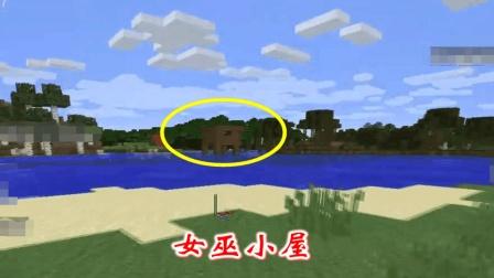 我的世界278: 在村庄水井下方未找到地牢, 最后却发现了女巫小屋