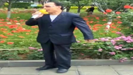 经典豫剧《刘万顺》唱得不赖!