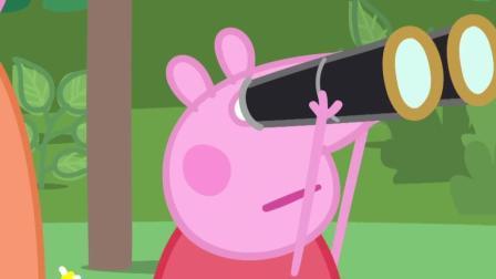 《小猪佩奇》佩奇他们用望远镜看见了树上的小鸟宝宝