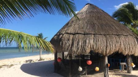 私人海滩 海景别墅只要200?