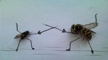 董大姐小妙招: 自制苍蝇捕捉器, 来一只捉一只, 简单又好用