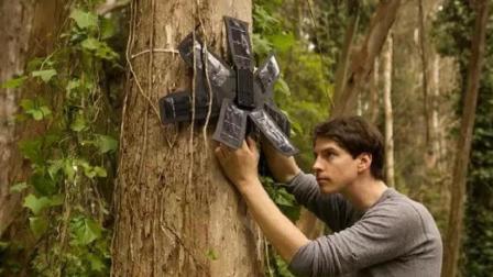 小伙利用废旧手机, 做了一个报警器, 成功拯救了60万公顷雨林