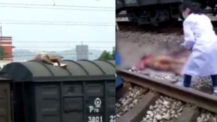 想当网红爬火车拍抖音 男子惨被高压电烧伤