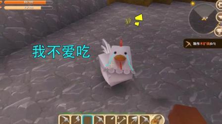 迷你世界: 真不该把这只挑食的小鸡领回家的, 这下好了, 啥都不吃了