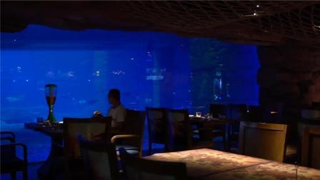 广州天河正佳广场这家餐吧,有鲨鱼看