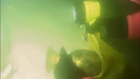 《北海巨妖》深海勘探寻宝藏 不料遭遇险境