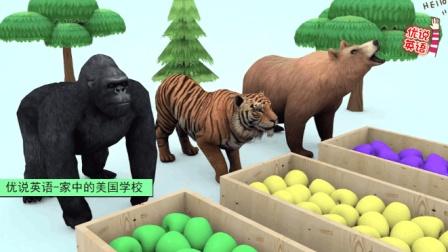 新美国英语启蒙 喂动物们吃苹果变不同的颜色 家中的美国学校