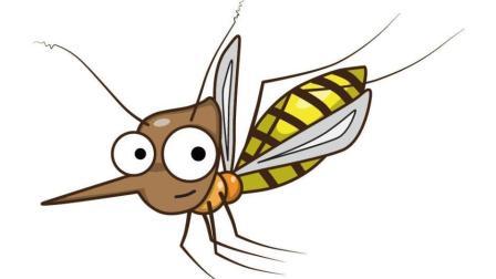 天一热就有蚊子? 别烦恼, 家里放上这东西, 比蚊香还管用