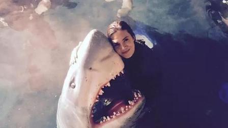 三分钟看完《鲨滩》姐妹篇, 《鲨海》, 又一部能给深海爱好者留下阴影的片子