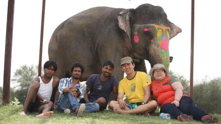 大象身上还能画画? 中国小伙带你近距离接触印度大象, 看完真想去