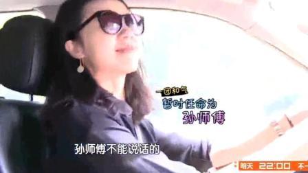 孙莉开车, 黄磊带多多一家出游, 好温馨一家