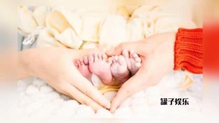 谢娜产下双胞胎女儿, 张杰首发全家福照片, 何炅转发语信息量巨大