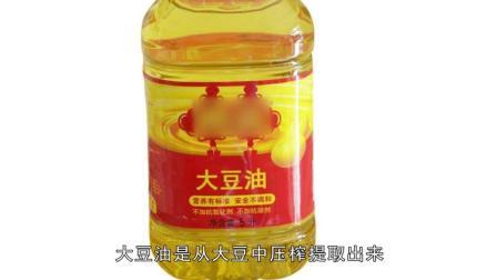 花生油、大豆油、菜籽油、猪油有什么不同? 一目了然