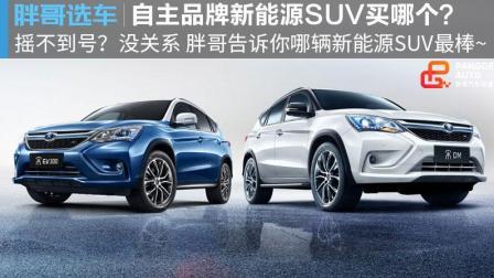 【胖哥选车】 新能源SUV买哪个好?