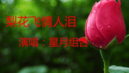 新歌来袭: 星月组合一首《梨花飞情人泪》唱哭多少有情人