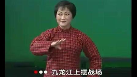 河北梆子《龙江颂选段 九龙江上摆战场》实力派