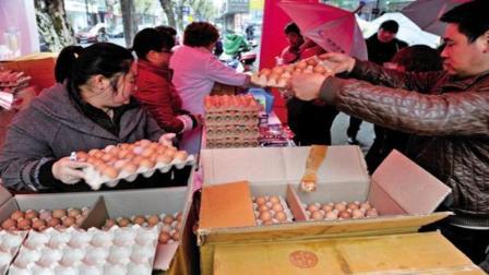 为什么药店买药还会送鸡蛋, 不怕亏本吗? 看完终于知道其中猫腻