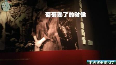 【军典老电影•37】一部反映农村合作社生活的故事片: 《葡萄熟了的时候》