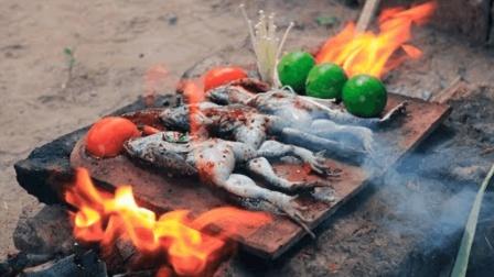 石板烤田鸡, 生存哥这烤法实在太秒了, 隔着屏幕都流口水