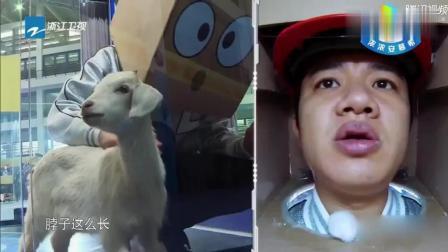 鹿晗陈伟霆都和动物相处很好, 只有邓超怕得不敢接近