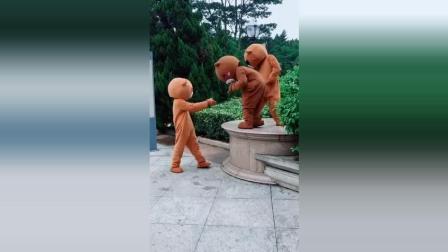 永远都上不去的3只笨熊, 看一次笑一次!