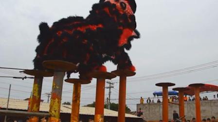 湛江麻章传统年例文化节,舞狮还能这么抖屁股