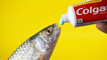 其实, 牙膏并不只是用来刷牙, 这些用途才是最正确的, 太实用了