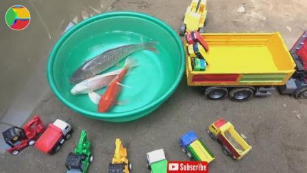 汽车挖掘机玩具车捉鱼, 婴幼儿宝宝玩具游戏视频