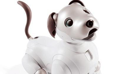 日本一款机器狗消失了多年, 现如今又活过来了!