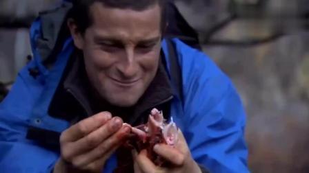 贝爷荒野求生, 路遇鹿肉, 吃的爽歪歪