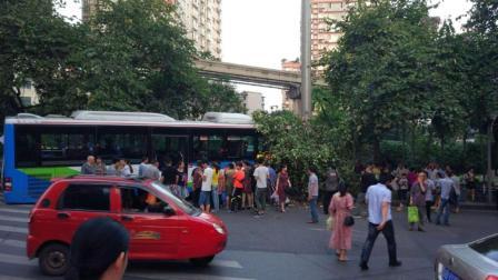 公交失控撞断行道树 车头被压路人受惊