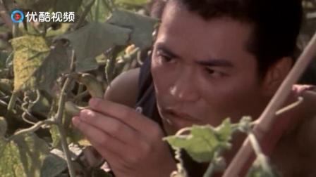 """蔬菜长不大,男子给它""""号号脉""""就知道了问题所在,厉害啊!"""