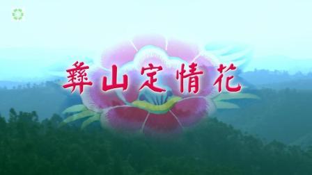 云南牟定彝族风情纪录片《彝山定情花》: 非遗文化的魅力传承
