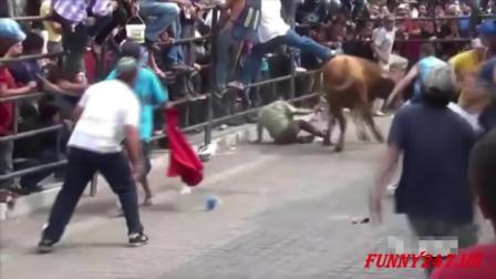 被激怒的小牛超级厉害