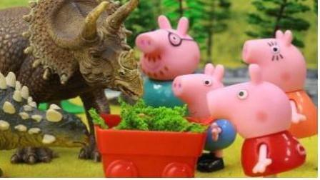 小猪佩奇视频大全56 粉红小猪玩具视频 小猪佩奇动画片