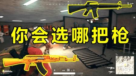 绝地求生只有M16和AKM你选谁玩家回答竟然出奇一致!