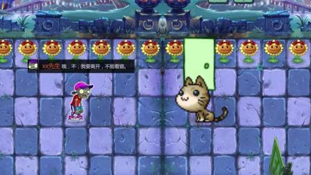 植物大战僵尸的世界 猫是不能碰的
