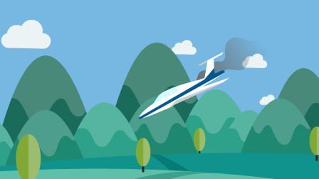 美一小型飞机坠毁燃烧12英亩地