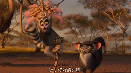 《马达加斯加2 粤语版》  长颈鹿爱上河马 受鼓励追女神表白